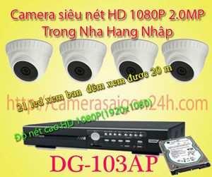 Lắp đặt camera quan sát giá rẻ camera FULL HD 1080P Nhập Nguyên DG-103AP