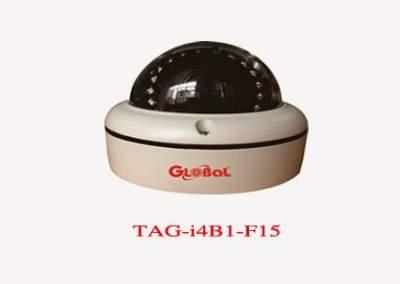 GLOBAL TAG-i4B1-F15 , TAG-i4B1-F15