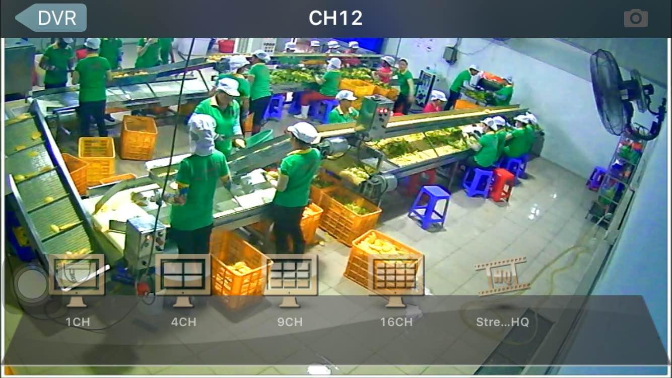 hình ảnh tại xưởng sản xuất khu công nghiệp long thành đồng nai