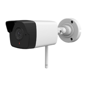 CAMERA -IP -2MP- HDPARAGON- HDS-1021IRAW
