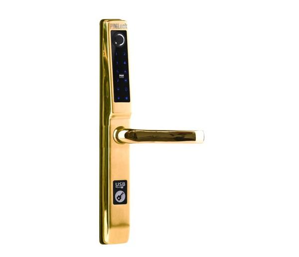 FP5293,Khóa cửa điện tử PHGLock FP5293 (Vàng) ,Khóa cửa vân tay cho cửa nhôm PHGLOCK FP5293 (Vàng),Khoá cửa nhôm văn phòng PHGLock FP5293 (Vàng),